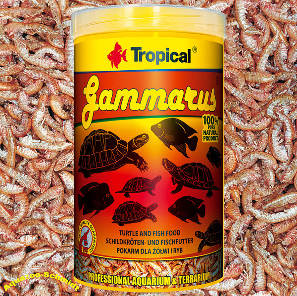 """Tropical Gammarus 1L"""